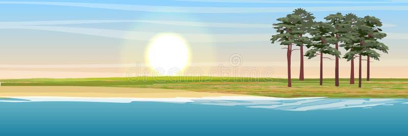 Sosny na wybrzeżu jezioro lub morze ilustracji