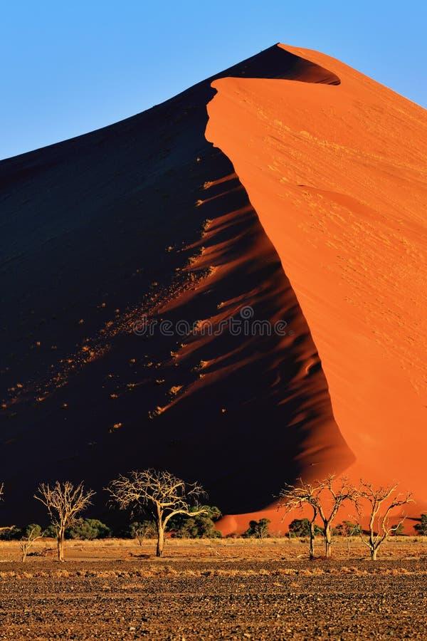 Sossusvlei, национальный парк Namib Naukluft, Намибия стоковое фото rf