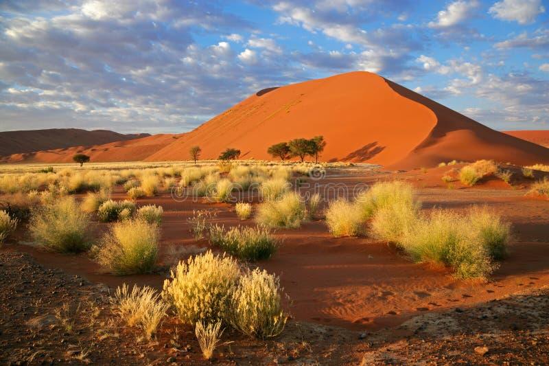 sossusvlei de ciel de la Namibie d'herbe de dune photographie stock libre de droits