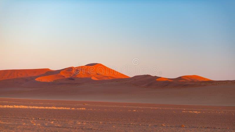 Sossusvlei Namibia, destino del viaje en África Las dunas y la arcilla de arena salan la cacerola con los árboles del acacia, par imagen de archivo libre de regalías