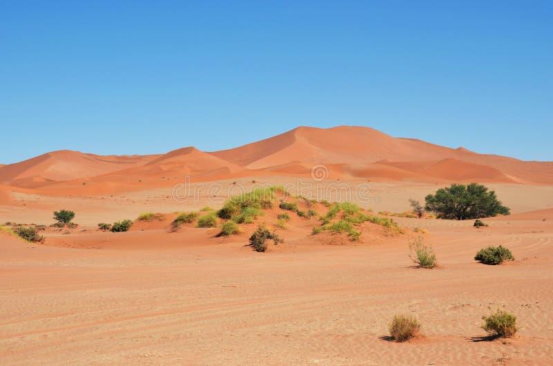 Sossusvlei, parque nacional de Namib Naukluft, Namibia imagenes de archivo
