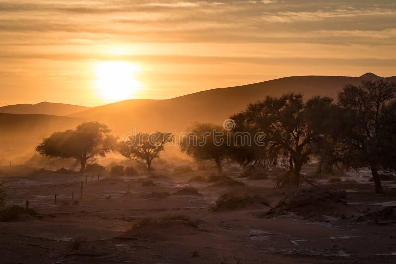 Sossusvlei soluppgång arkivbilder