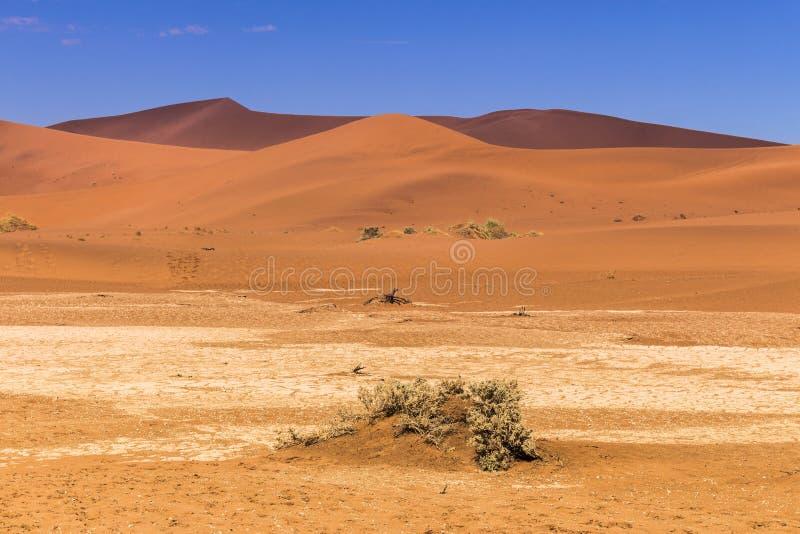 Sossusvlie piaska diuny, Namib pustynia obraz stock