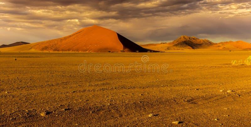 Sossusvlie sanddyn, Namib öken royaltyfri fotografi