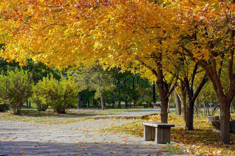 Sosta d'autunno immagini stock