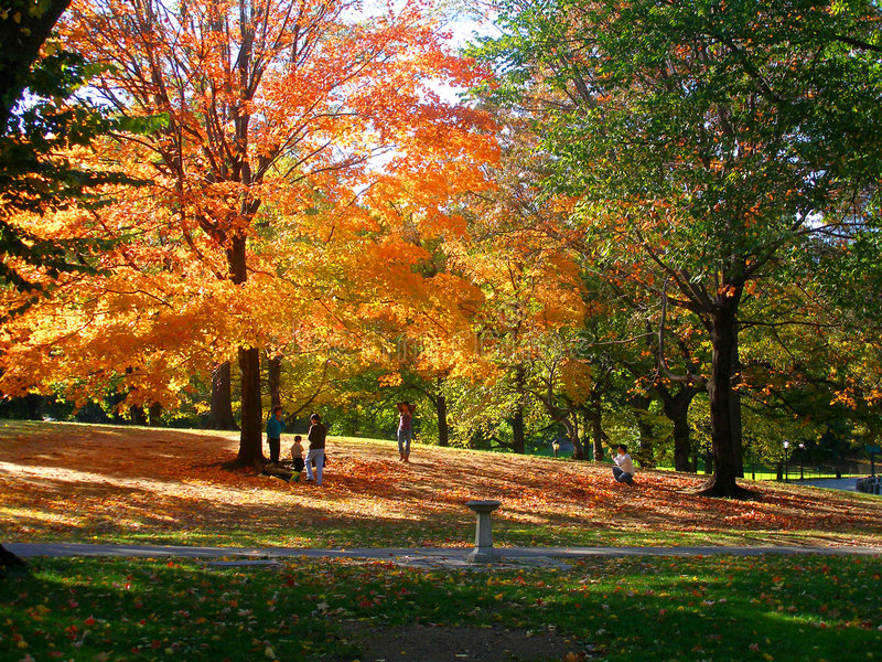 Sosta d'autunno immagine stock