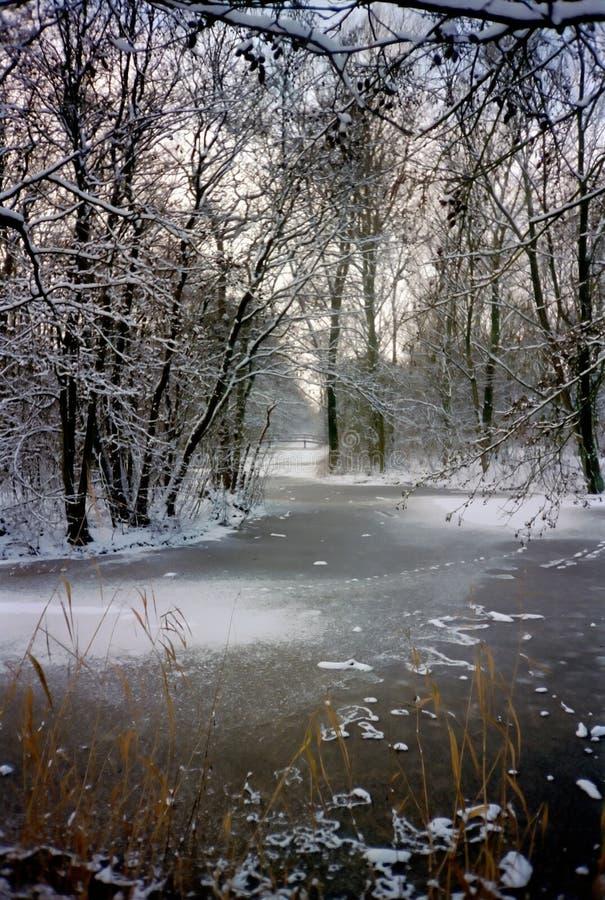 Sosta Dello Snowy Fotografie Stock Libere da Diritti
