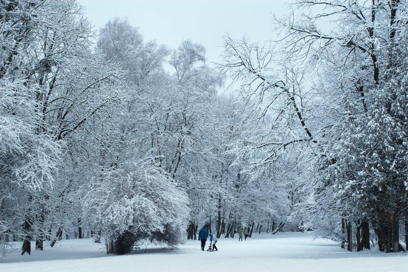Sosta di inverno coperta di neve fotografie stock