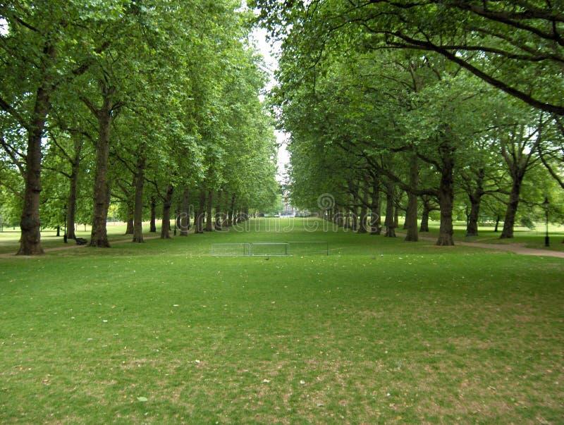 Download Sosta a Londra immagine stock. Immagine di verde, albero - 206245