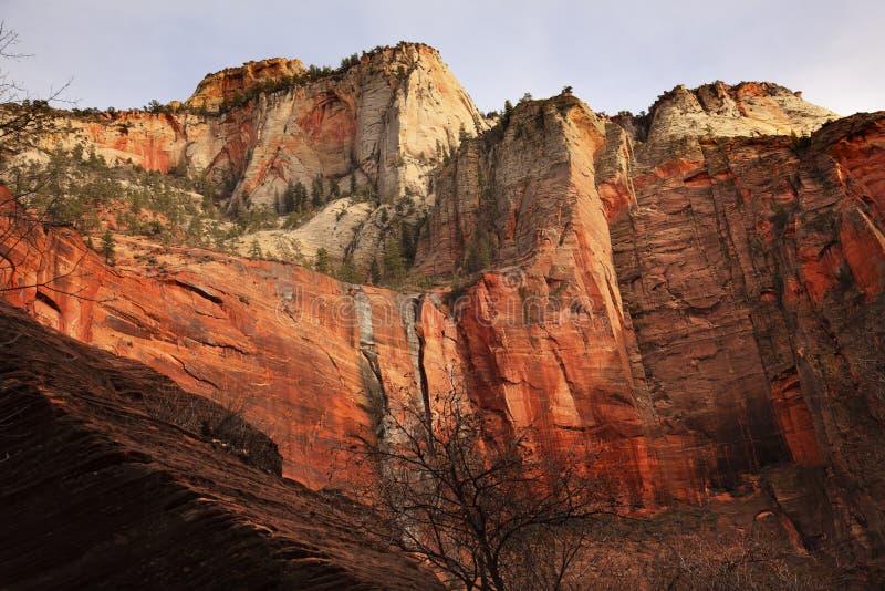 Sosta nazionale bianca rossa Utah di Zion delle pareti di canyon fotografia stock