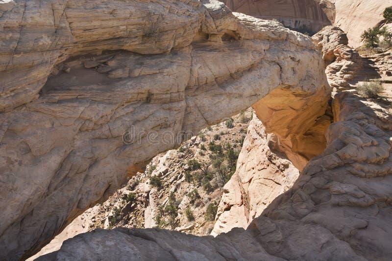Download Sosta Nazionale Degli Archi Fotografia Stock - Immagine di bedrock, scogliera: 7301730