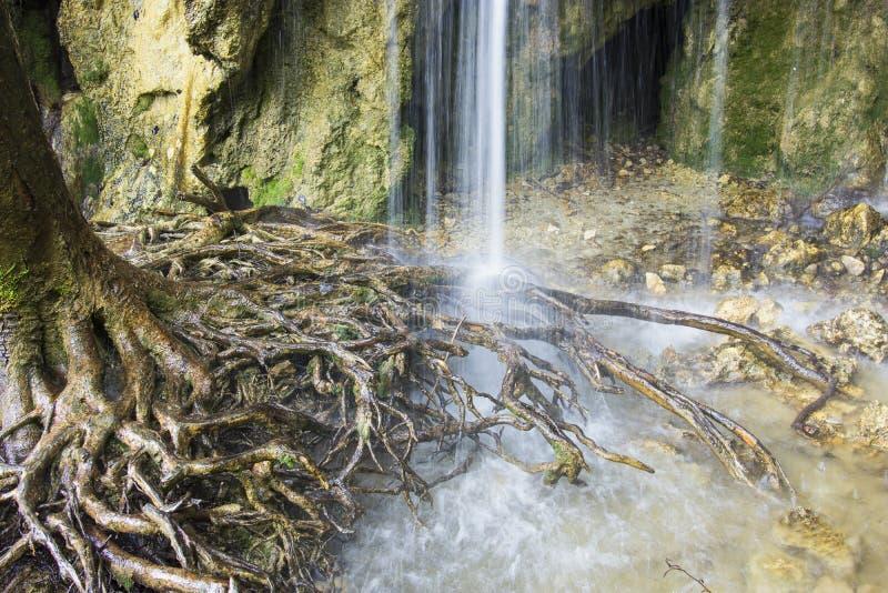 Sosta nazionale dei laghi Plitvice nel Croatia immagine stock libera da diritti
