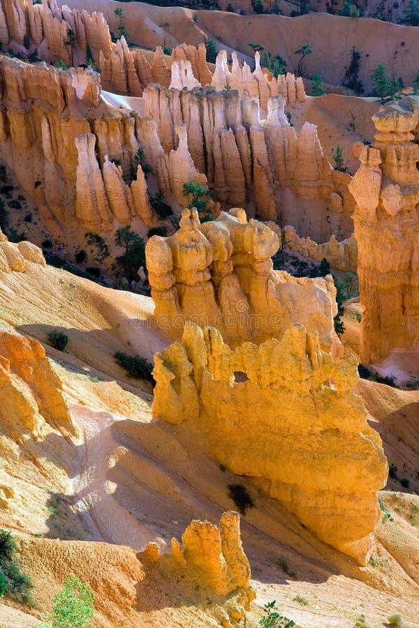 Sosta nazionale del canyon di Bryce fotografie stock libere da diritti