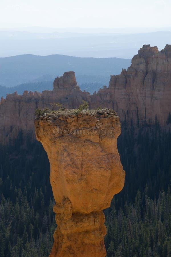 Sosta nazionale del canyon di Bryce, Utah immagini stock libere da diritti