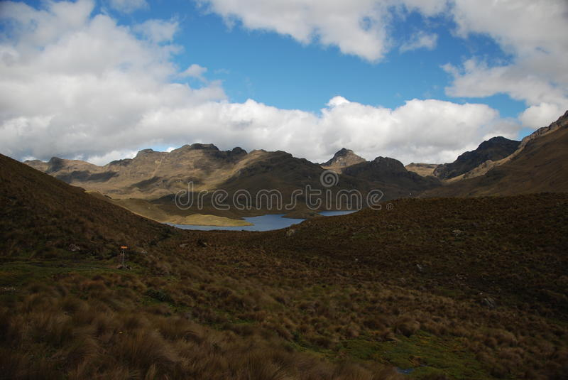 Sosta nazionale del Ecuadorian fotografia stock