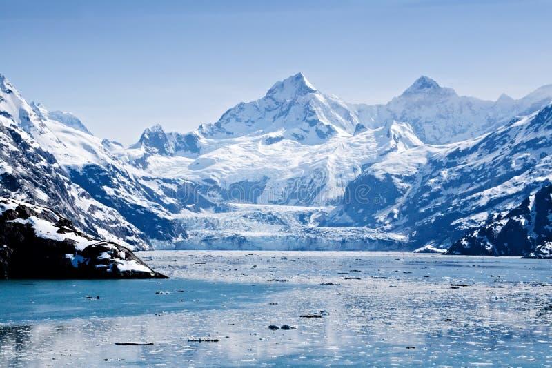 Sosta nazionale della baia di ghiacciaio fotografie stock