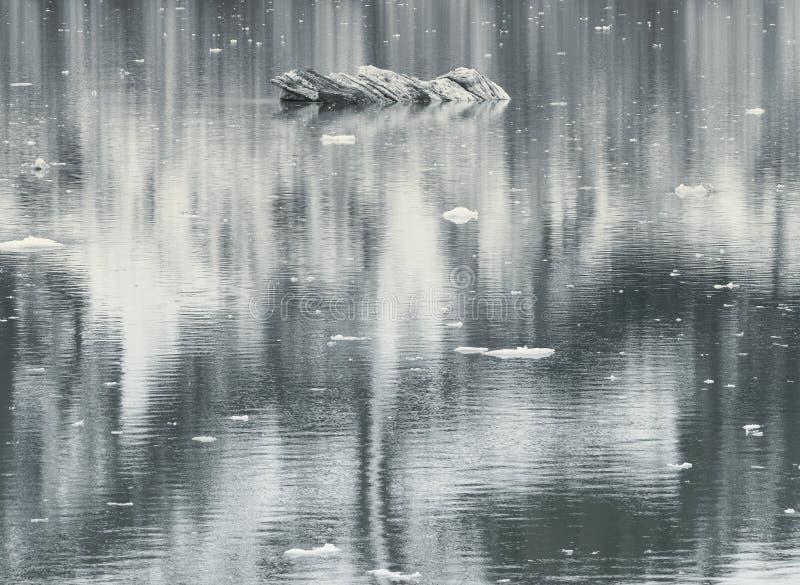 Sosta nazionale della baia di ghiacciaio, Alaska fotografie stock libere da diritti