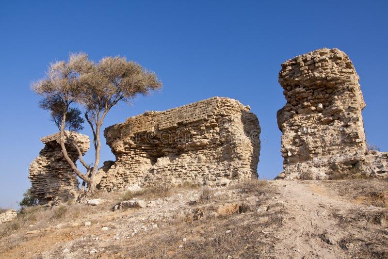 Sosta nazionale di Ashkelon fotografie stock libere da diritti