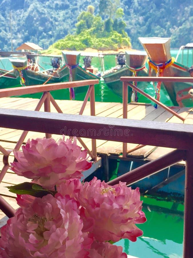 Sosta nazionale di Khao Sok immagine stock