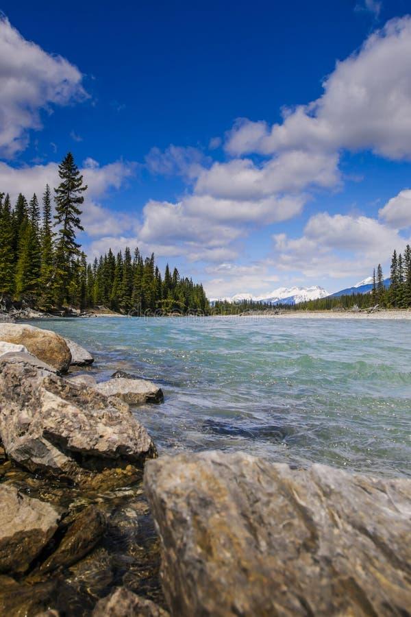 Sosta nazionale di Kootenay fotografia stock libera da diritti