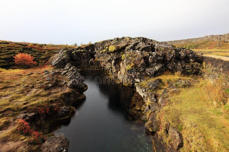 Sosta nazionale in Islanda immagini stock libere da diritti