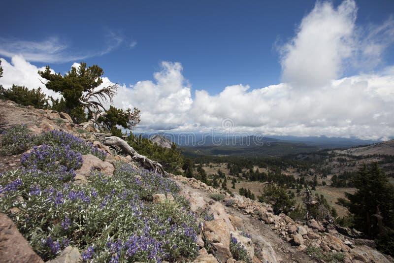 Sosta nazionale vulcanica del Lassen fotografia stock libera da diritti