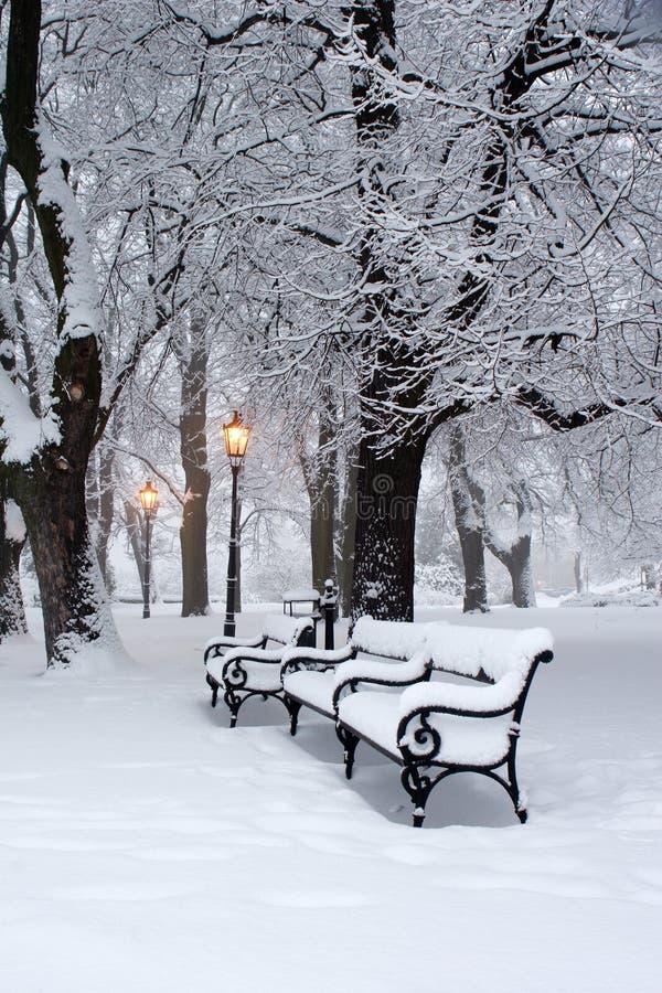Sosta nell'inverno e nella lampada immagine stock libera da diritti