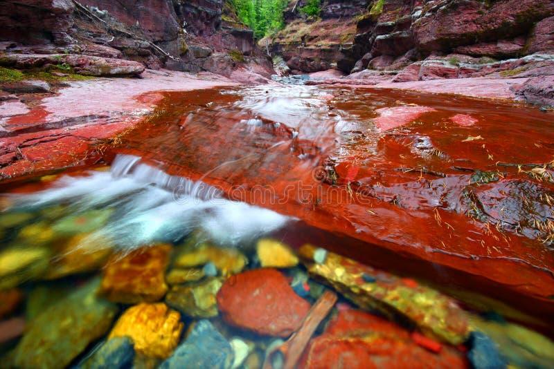 Sosta rossa dei laghi Waterton del canyon della roccia immagini stock libere da diritti