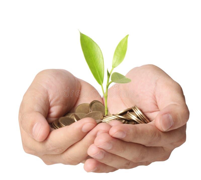 Sostener la planta que brota de un puñado de monedas stock de ilustración