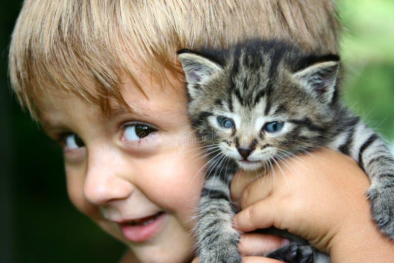 Sostener mi gatito imagenes de archivo