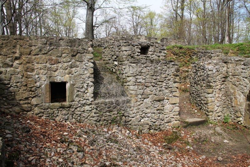 Sostyn-Schloss stockbilder