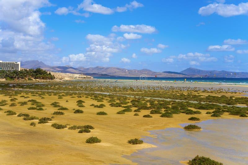 Sotavento海滩在费埃特文图拉岛,西班牙 库存照片
