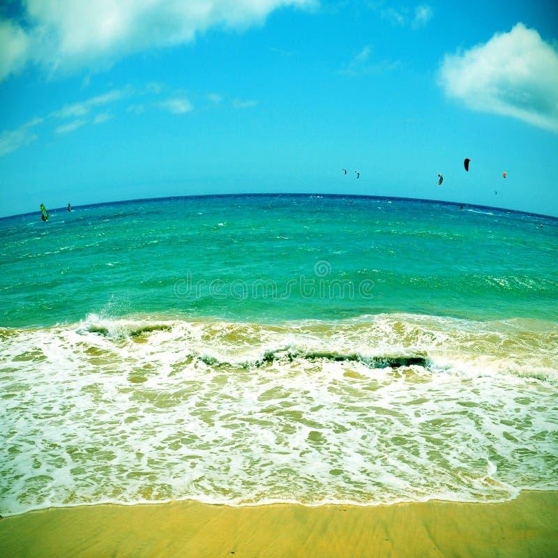 Sotavento海滩在费埃特文图拉岛,加那利群岛,西班牙 免版税库存图片