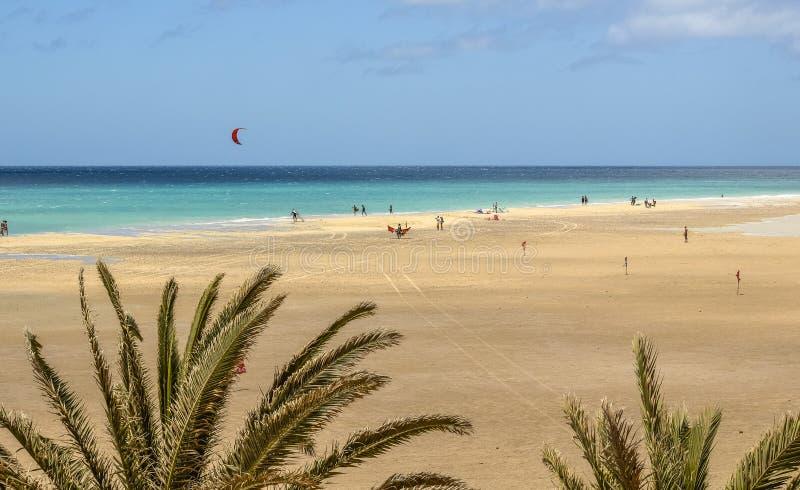 Sotavento海滩在费埃特文图拉岛,加那利群岛 库存照片