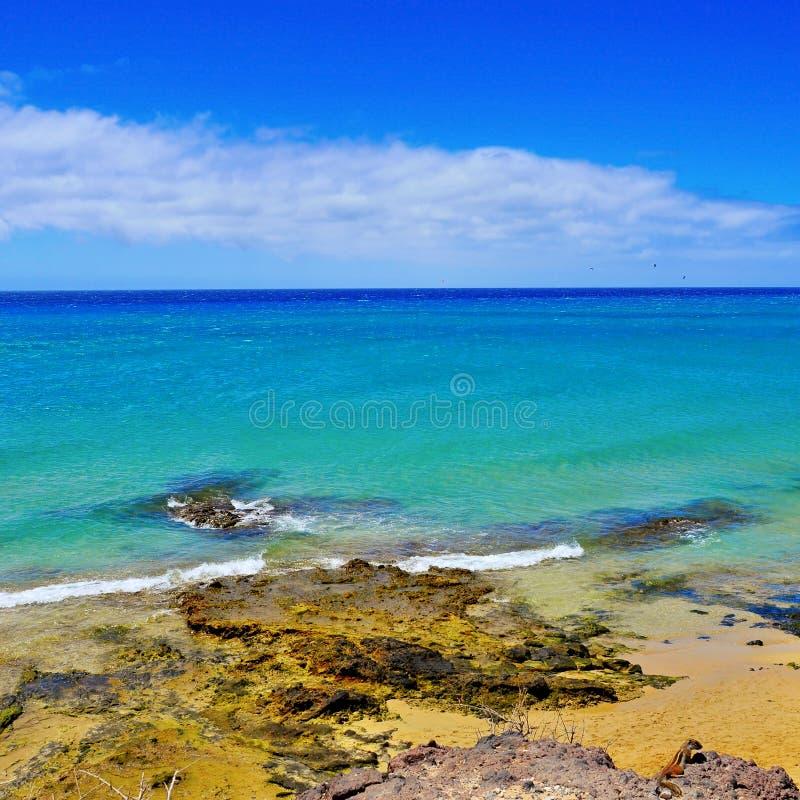 Sotavento海滩在费埃特文图拉岛,西班牙 免版税库存照片