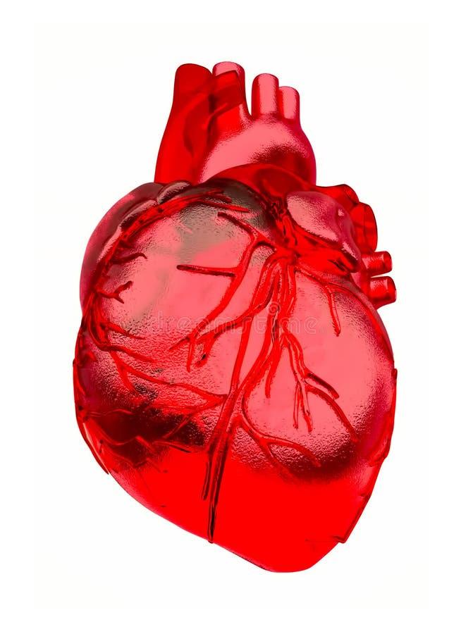 Sotto forma di cuore Estratto sotto forma di cuore isolato su un fondo bianco illustrazione di stock