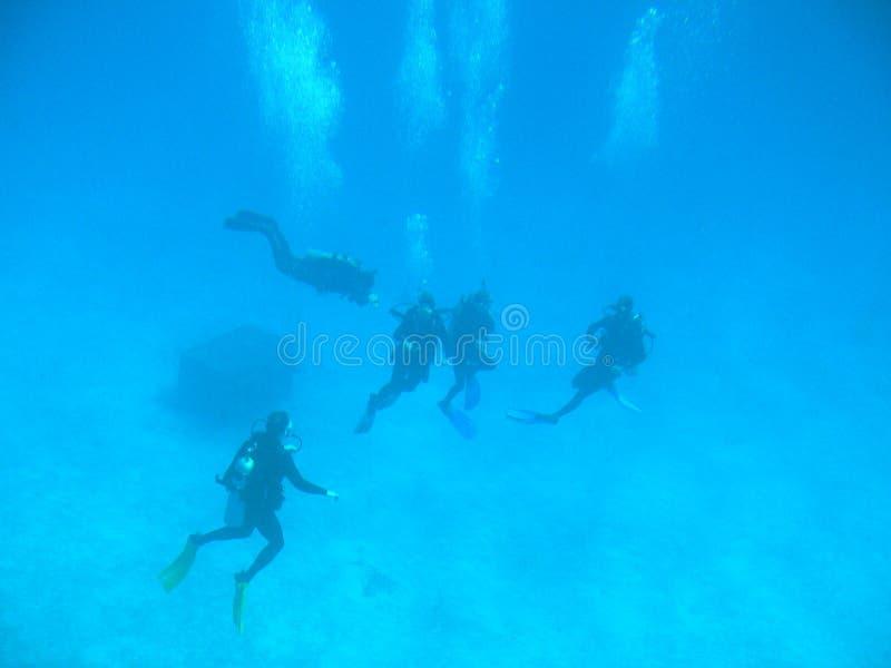 Sotto il mare immagini stock