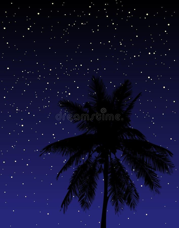 Sotto le stelle illustrazione vettoriale