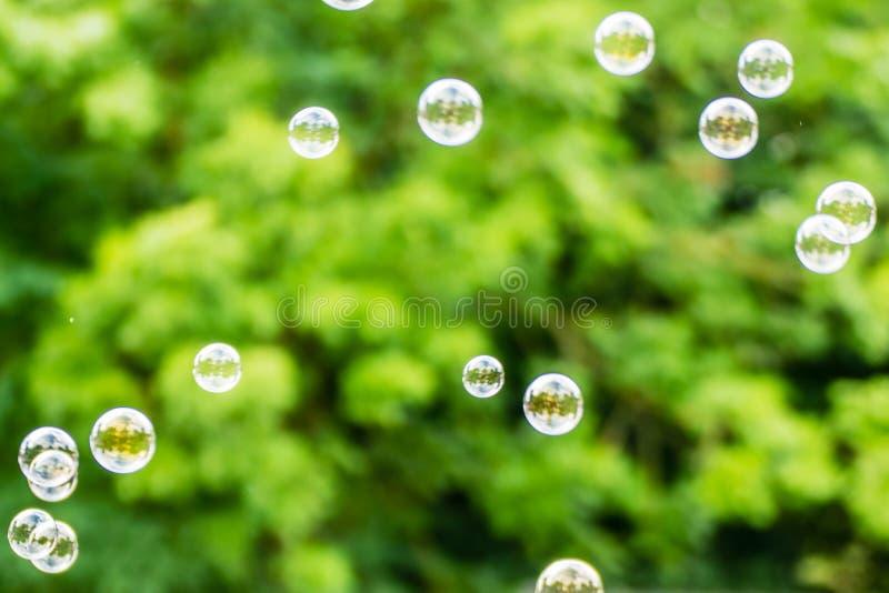 sottragga la priorità bassa Bolle di sapone sulla natura della sfuocatura fotografia stock