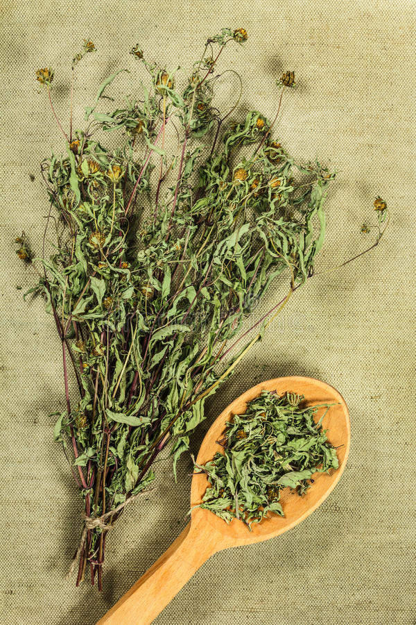 Souci de bureau Herbes sèches Phytothérapie, medicin phytotherapy photos stock