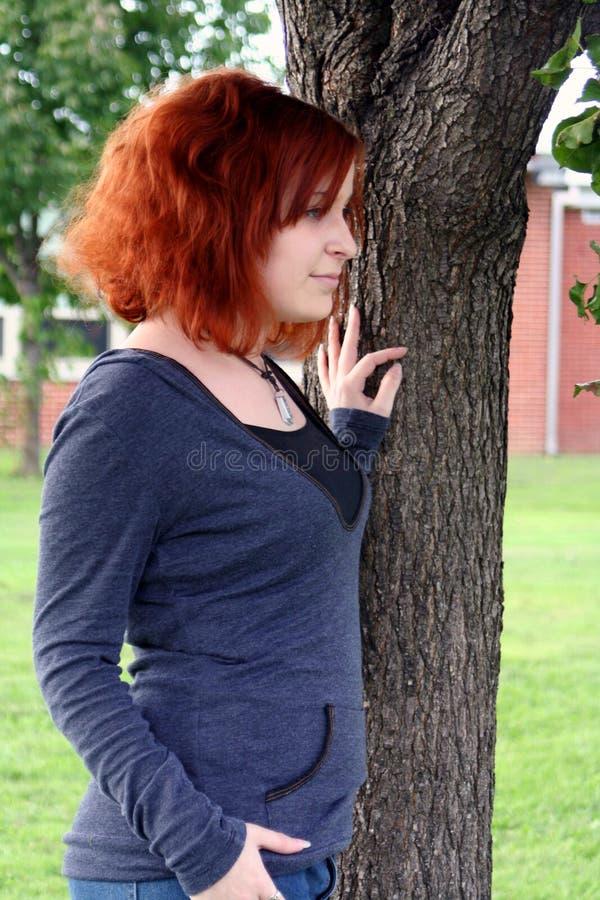 Souhait par l'arbre images stock