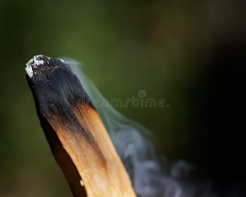 Souillure de la cérémonie utilisant le bâton en bois saint péruvien d'encens de Palo Santo dans la forêt images stock