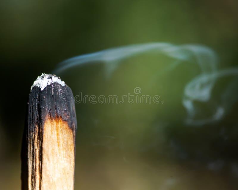 Souillure de la cérémonie utilisant le bâton en bois saint péruvien d'encens de Palo Santo dans la forêt photo libre de droits