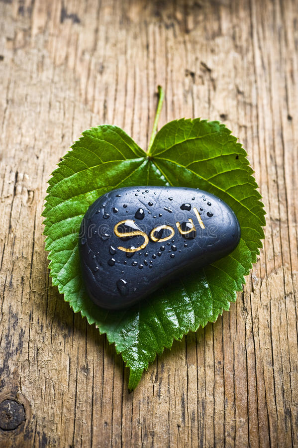 Free Soul And Healing Nature Royalty Free Stock Photos - 15989268
