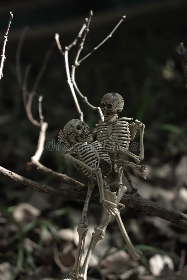 Soulmate skeleton lovers fall in love royalty free stock photos