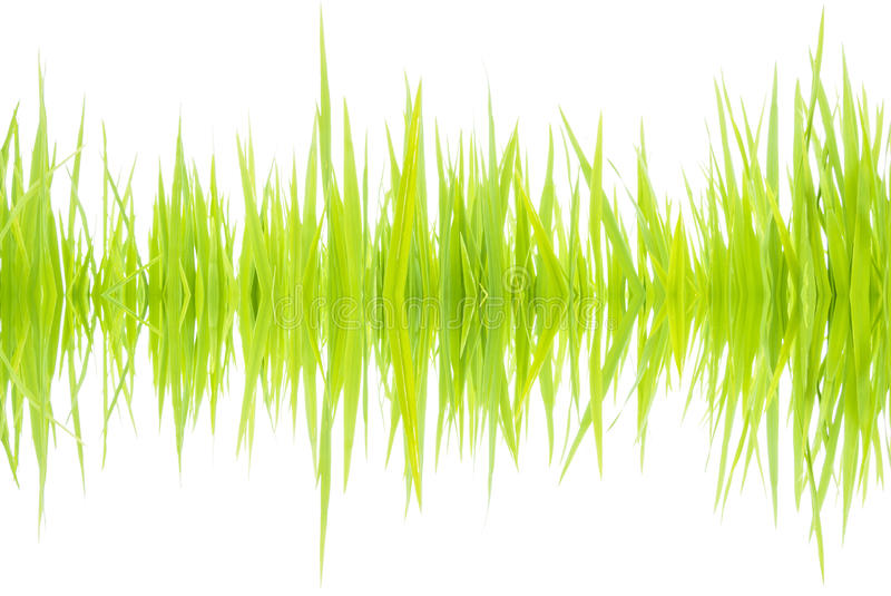 Sound waves 001 stock images