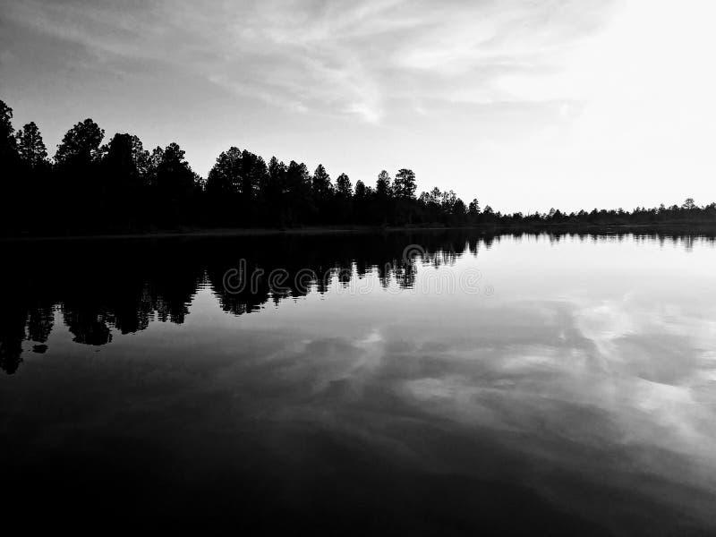 Soundwave της φύσης στοκ εικόνες