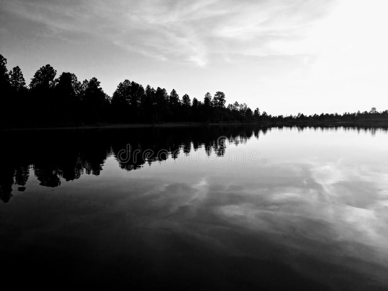 Soundwave der Natur stockbilder