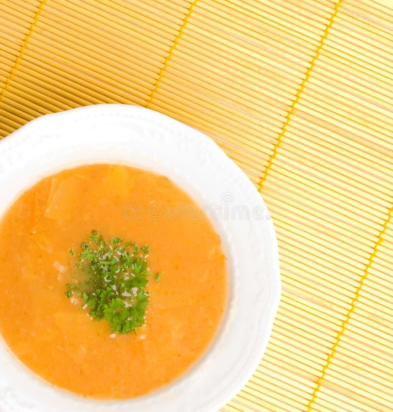 soup royaltyfri bild