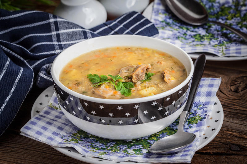 Soup with barley and chicken gizzards. Traditional soup with barley and chicken gizzards royalty free stock photos